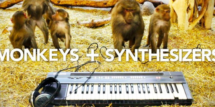 monkeysandsynthesizers