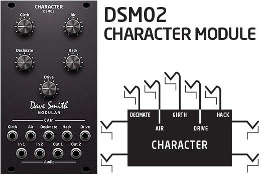 DSM02-Character-Module-Web-art