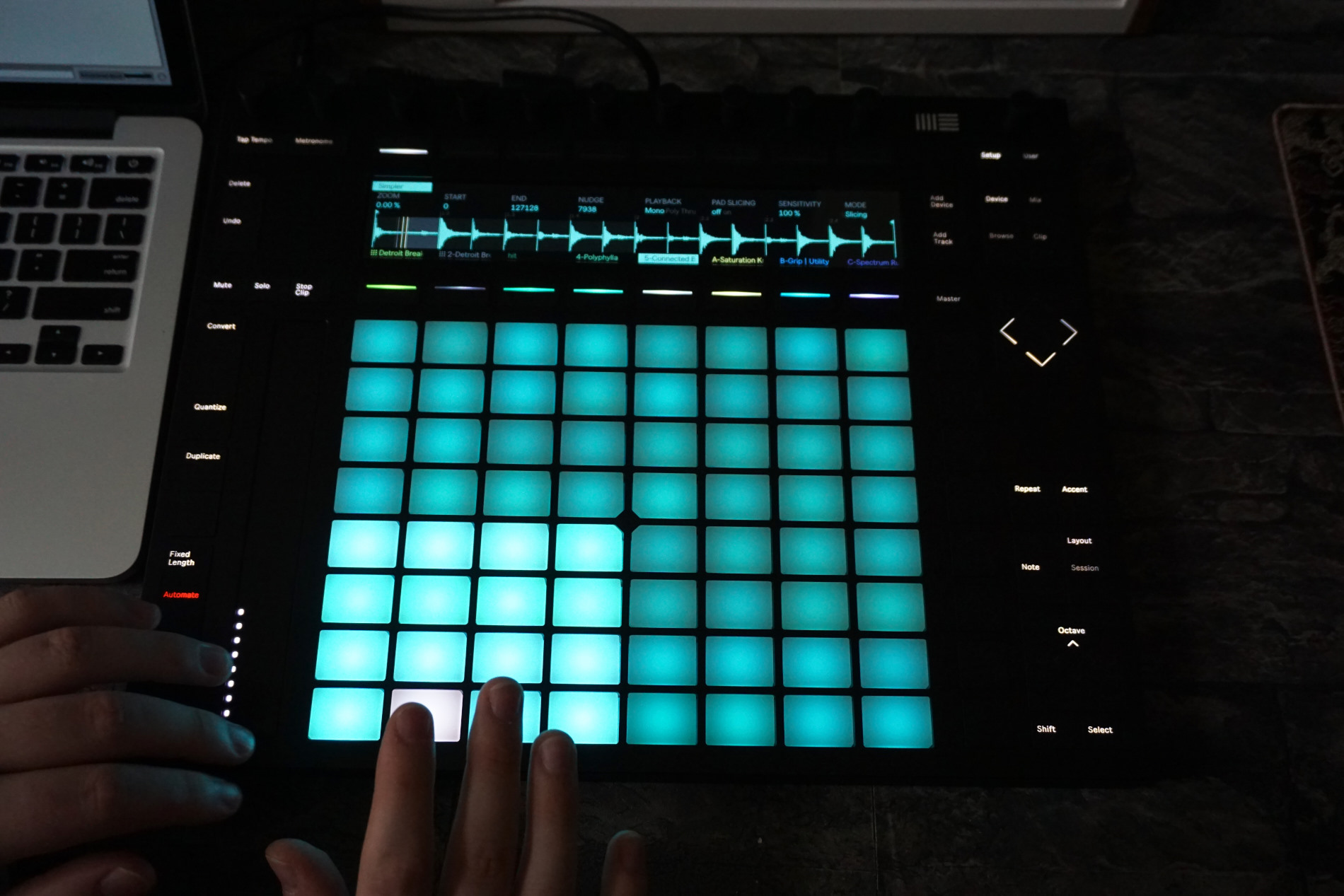 ableton push 2 hands on review cdm create digital music. Black Bedroom Furniture Sets. Home Design Ideas